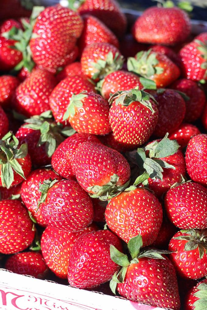 Strawberries // Fork in the Kitchen