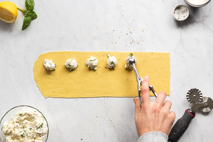 Placing dollops of cheese filling onto pasta sheet.